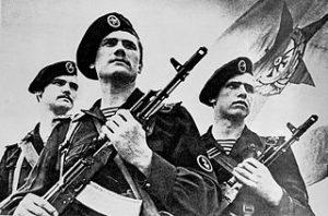 320px-soviet_naval_infantrymen_dn-sn-86-00829